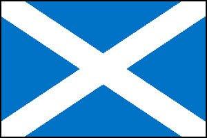 St Andrews Cross Flag Bunting
