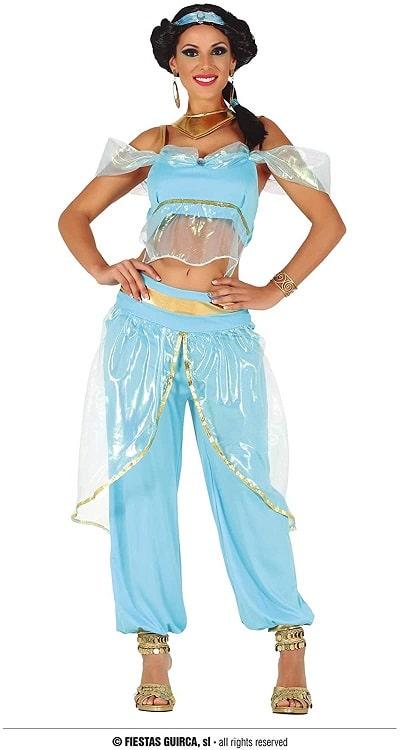 Arabian Princess Adult Costume Medium